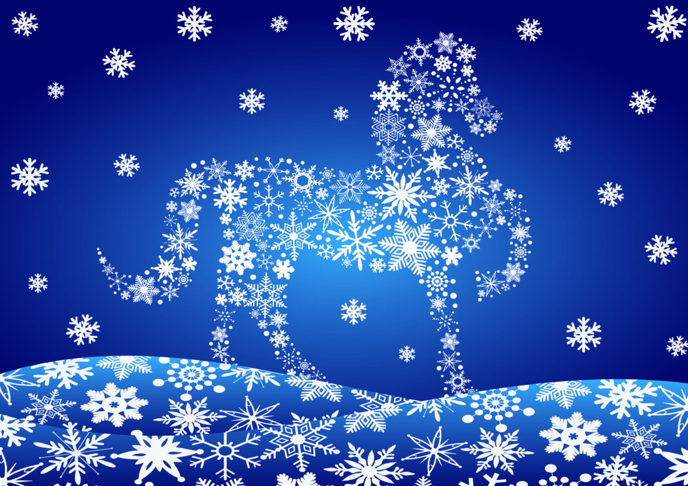 Snowflake - £5.99 (pack of 10) from the MDIRF