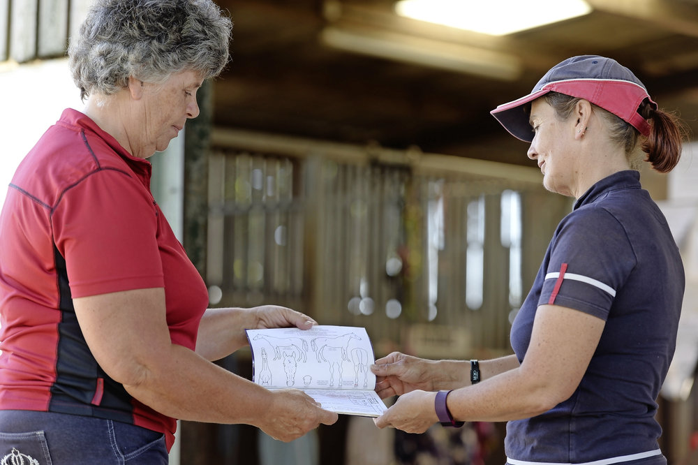 Selling your horse? - Read our legal advice tips