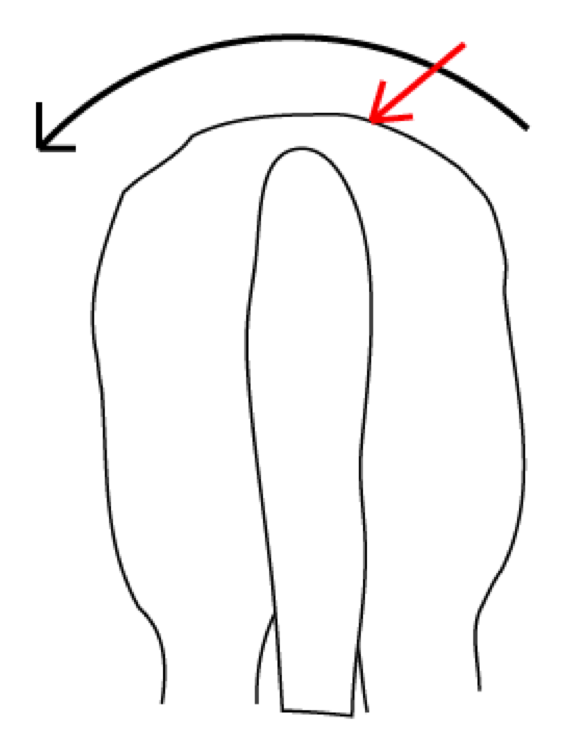 The force generated by a rider mounting from the ground on the left acts to pull the saddle over to the left (black arrow).The withers (and the girth) prevents the saddle from slipping over, but causes a build up of a huge amount of pressure (red arrow).