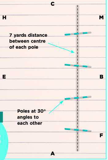 Riding Pole Patterns_preview_1.jpg
