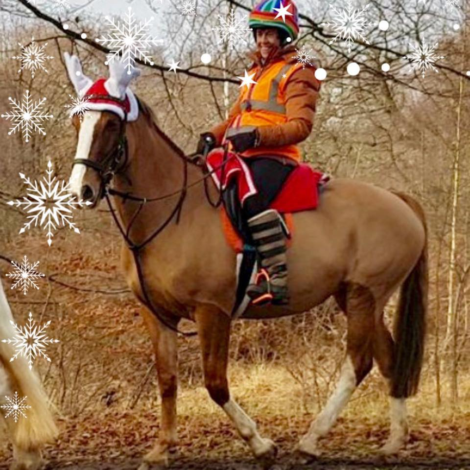 Here's Katherine and her horse Maggie going for a very Christmassy hack