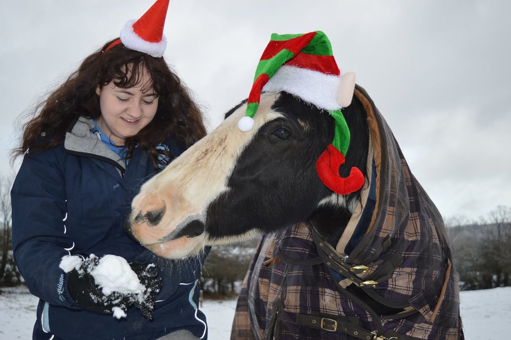 Lucy and her horse Dolly are ready to help Santa on Christmas eve!
