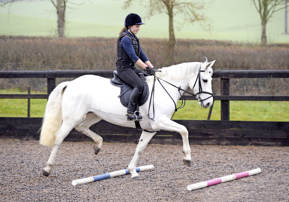 A soft and supple horse will benefit all areas of your riding.