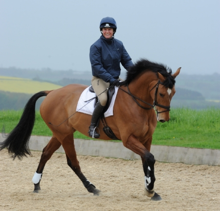 Piggy+flatwork+position.jpeg