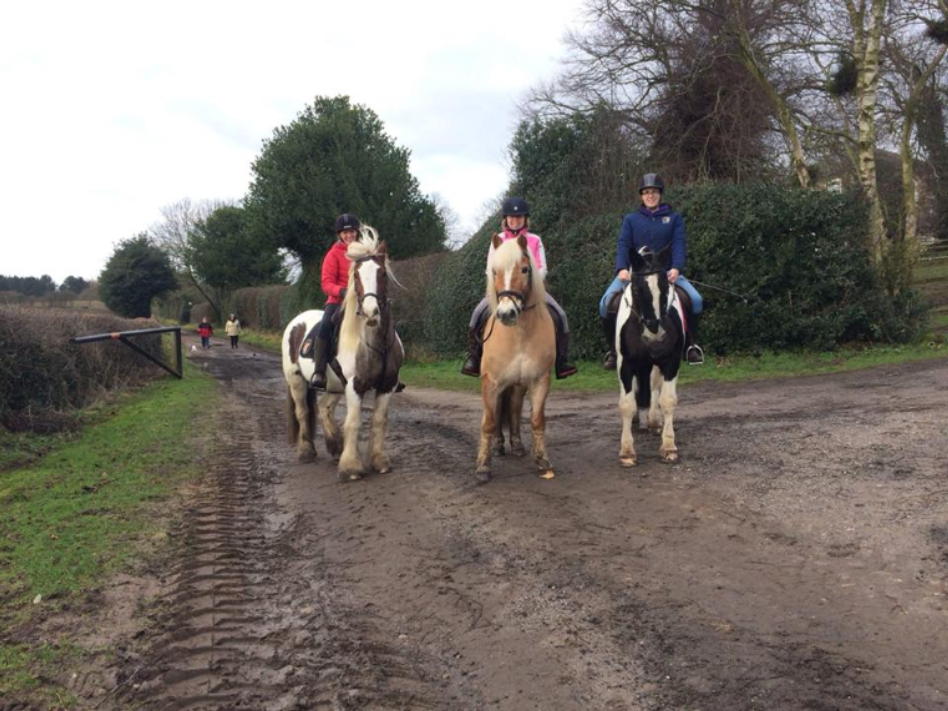 Katie Ward  - Wig Wam and friends- Crunchie and Frank! Me and Wig wam is 23 years young ( Far right) joined the challenge in January so bit late to the party but we have accumulated 167 miles so far!!!!! Xxxx