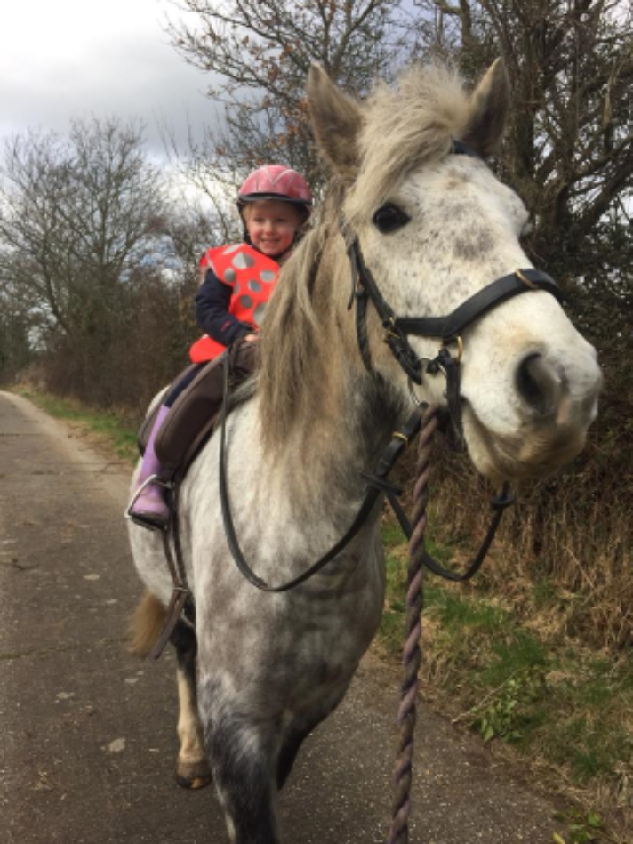 Vicky Hone  - Pippa my 4 yr old has started her hack 1000 miles she's on 8 miles now between her Shetland and my pony and loving it