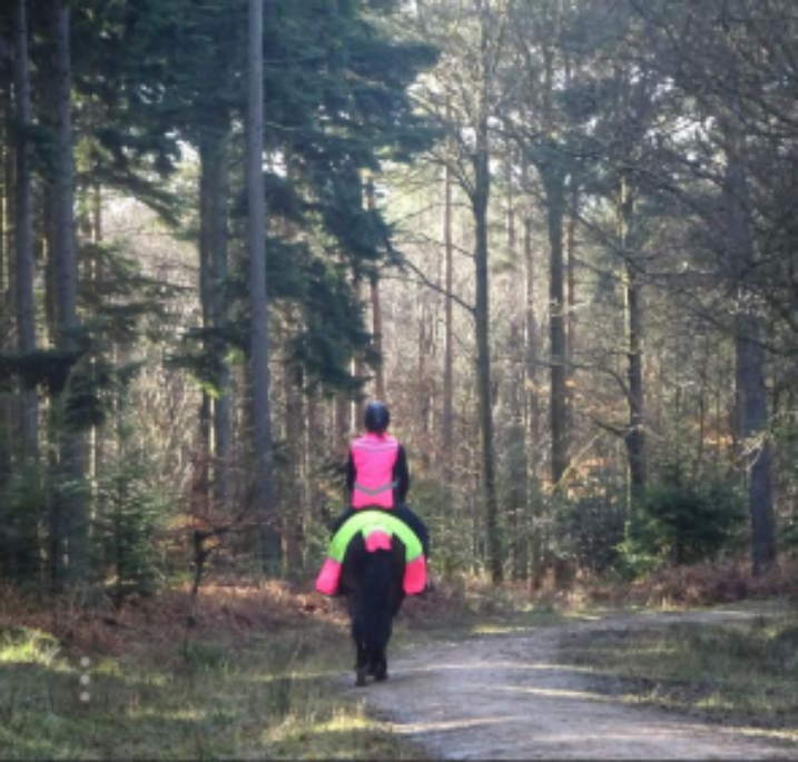 Sophie Joy  - We are up to 600 miles so far. I've loved taking part in the Hack 1000 miles challenge. Pete (my New Forest Pony) is the trimmest and fittest he's been - he's a very good doer so needs to watch his waist line, we've gained so much confidence, put some demons to rest from his past & achieved so many things I didn't think we would together because of the challenge. More importantly we have had so much fun together on our adventures. I hope Your Horse magazine continues the  #hack1000miles  challenge and it's been so much fun being part of the Facebook group and seeing everyone's progress & photo's   