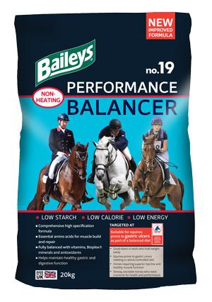 No19-Performance-Balancer-2017.jpg