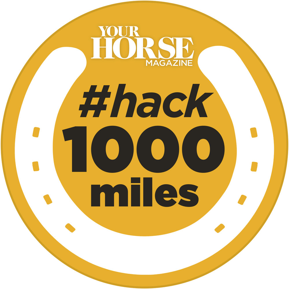 Hack1000mls(gold)logo.jpg