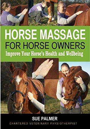 horsemassage.jpg