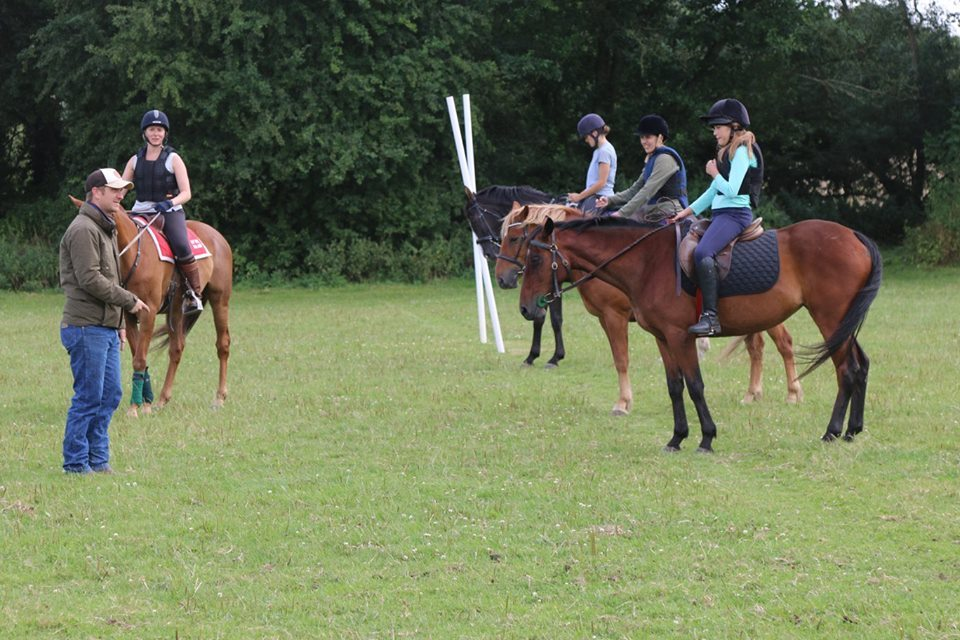 Attending clinics is a great way to get your horse calmly working in company