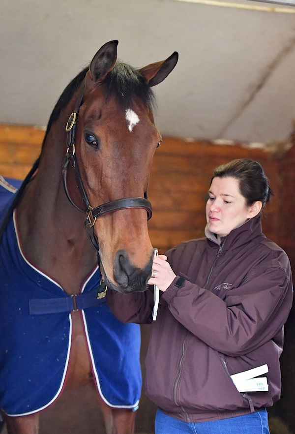 HM The Queens retired racehorse Barbers Shop with Dr Debbie Guest. Pic credit SMR photos