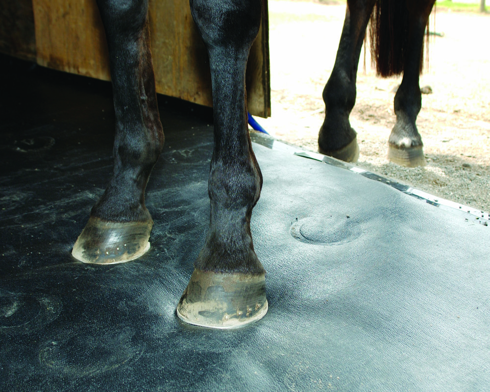 ComfortStall is designed to keep you horse happy and comfortable in his stable