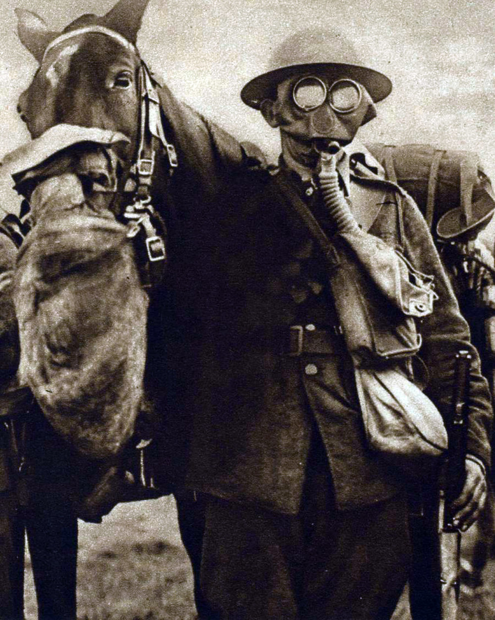 Horses and soldiers in gas masks.jpg