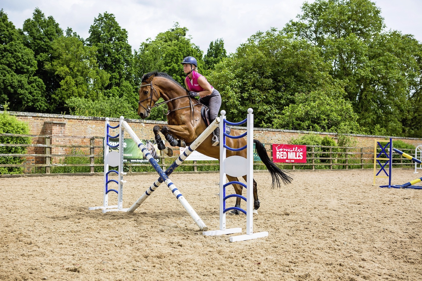 Get Creative With Cross Poles Your Horse Magazine