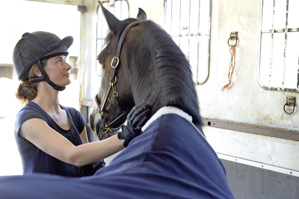 Staying calm yourself will help your horse settle on his travels
