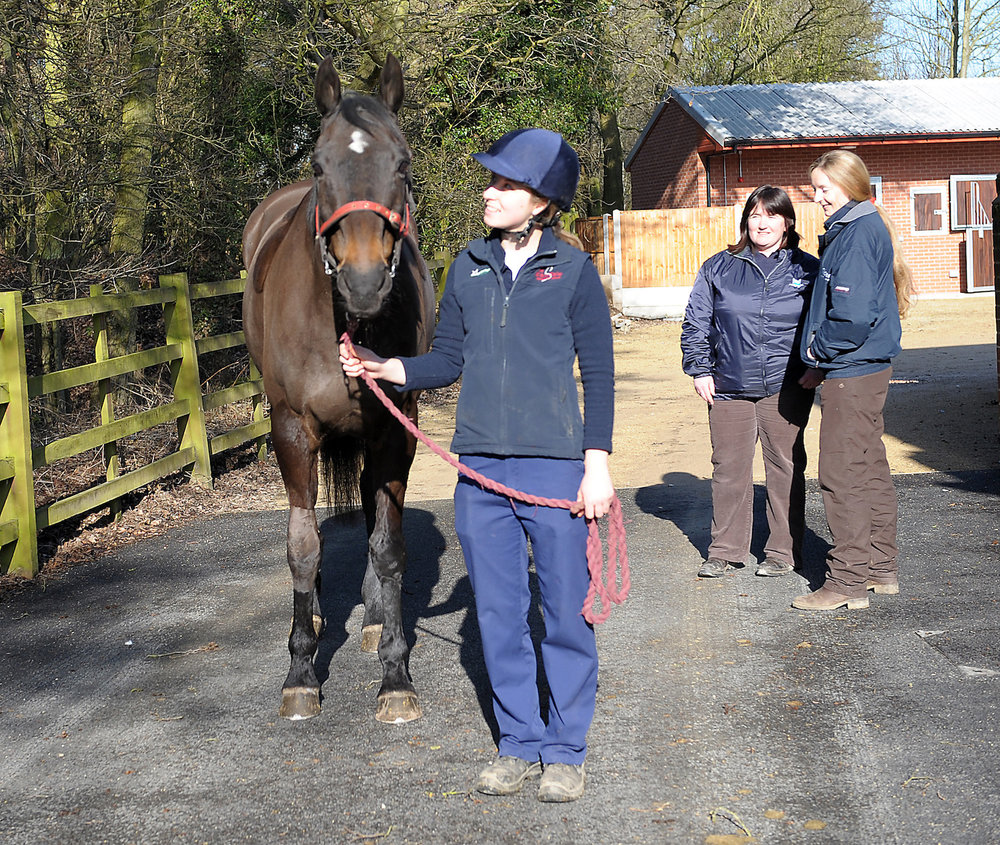 Equine%20staff%20at%20Markeaton.%20Credit%20Scarsdale%20Vets.jpg