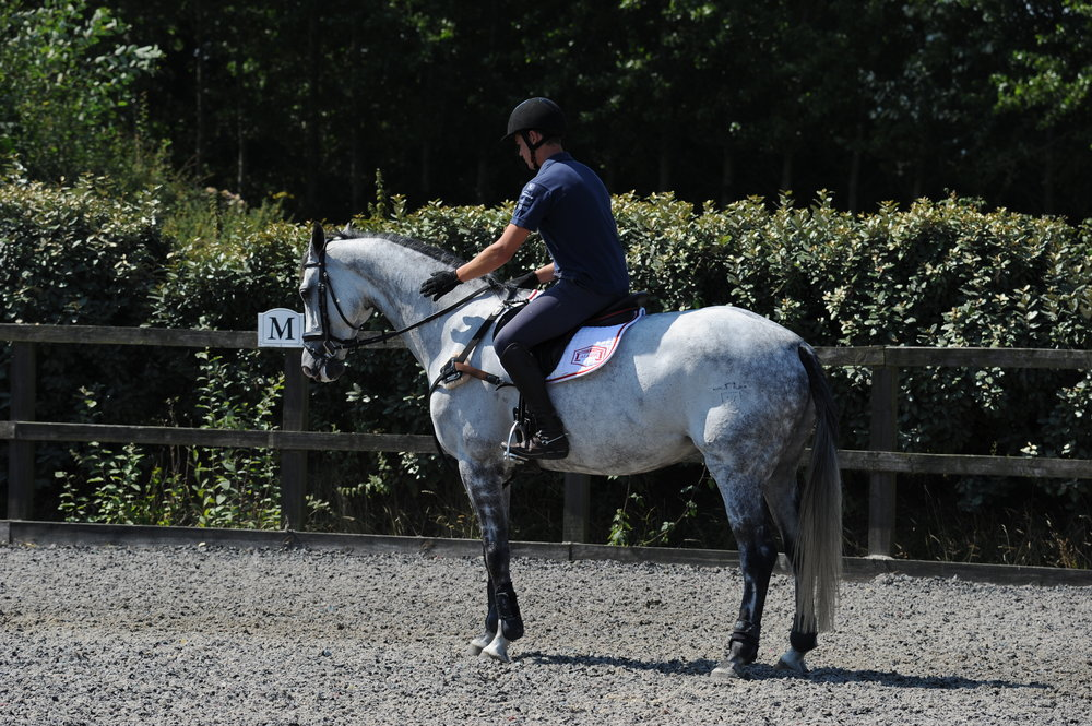 If your horse gets a bit keen jumping through a grid. Stop in a straight line afterwards