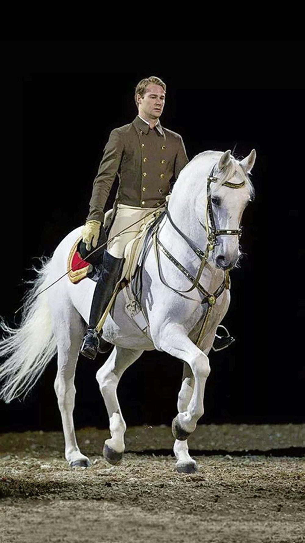 Dressage star Florian will be strutting his stuff