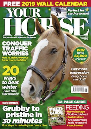 Cover 446_SG.jpg