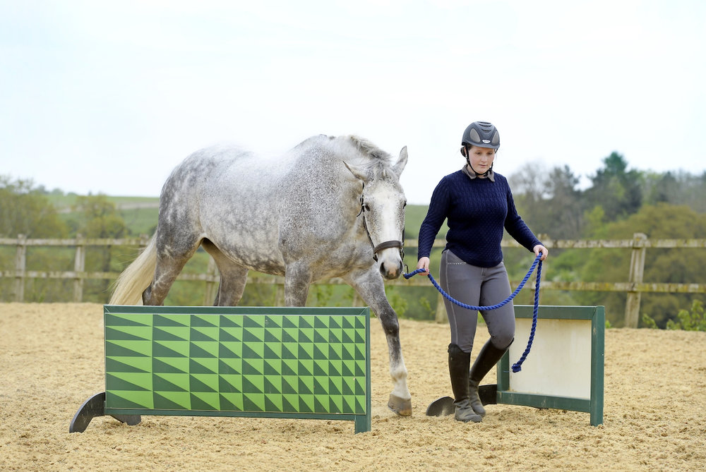 Working around obstacles will build your horse's confidence