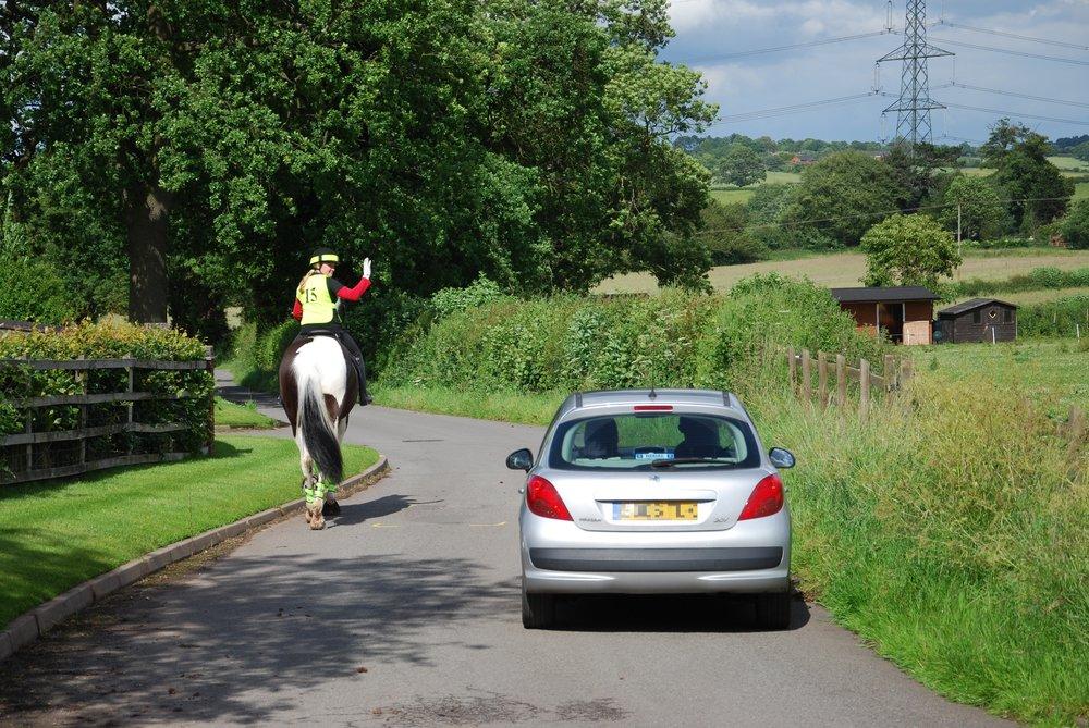 Car passing horse.JPG