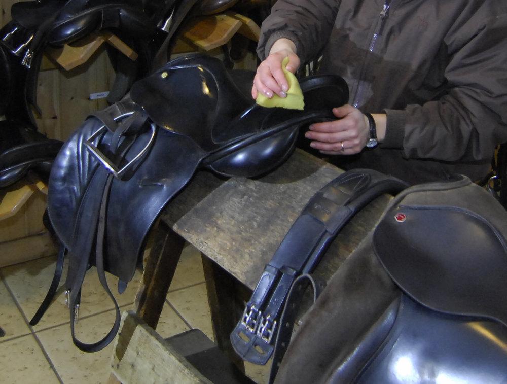 saddle_clean.jpg