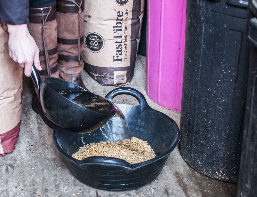 A low calorie balanced feed will provide all the vitamins and minerals your horse needs, without additional calories