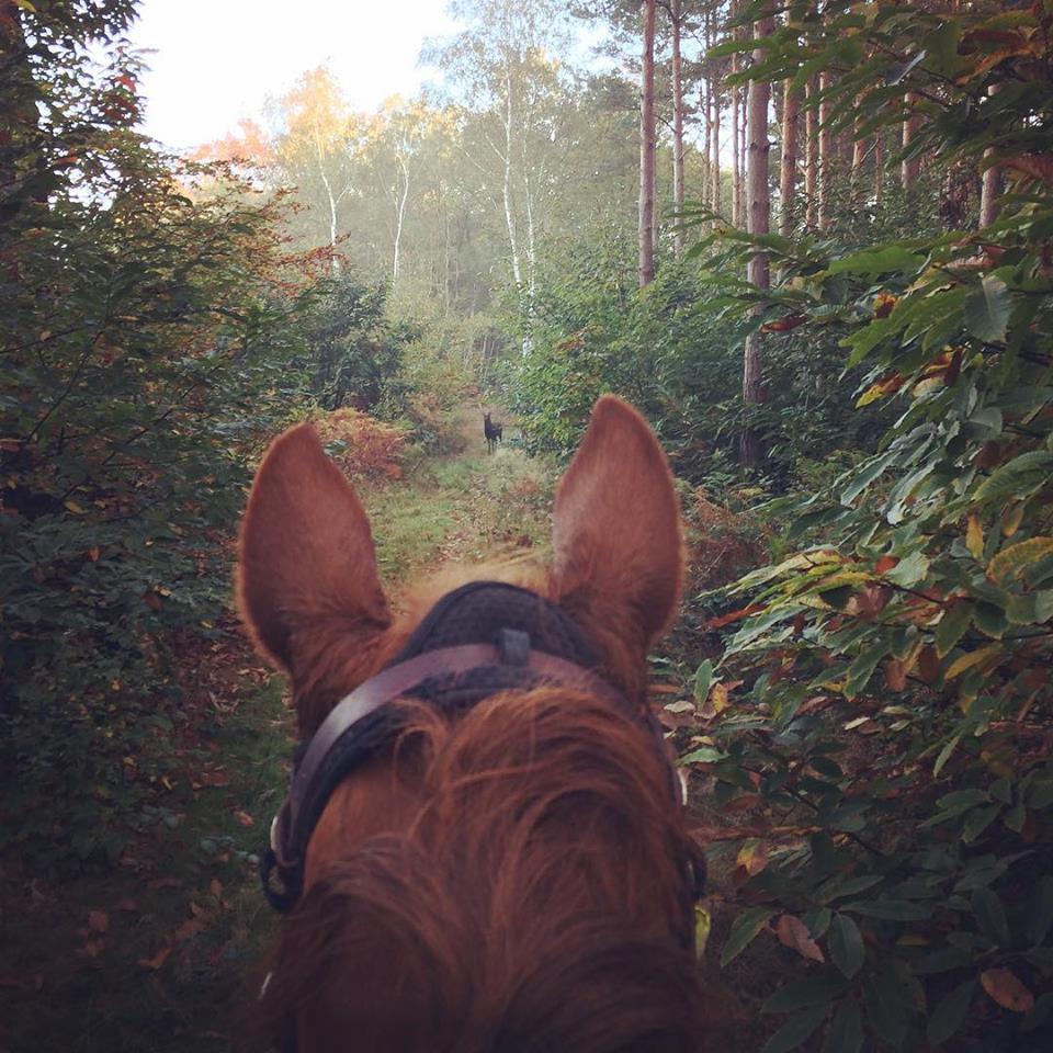 """Shauna Fowles – """"Now the summers coming we should be able to go faster and further! Not to mention entering sponsored ride season."""""""