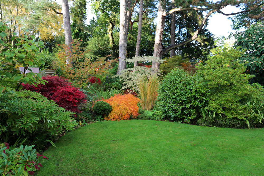"All gardeners go through a few challenges over the years – it's all part and parcel of creating an outdoor haven to be proud of – but it seems Phil and Diana Berry have had it a bit trickier than many.   They initially chose their half acre, heavily-wooded site in Staffordshire because of the number of mature trees that graced it. ""We loved it, but it was so overgrown! It took about a year to clear it fully and, needless to say, lots of skips and trips to the tip,"" says Phil.   After this first challenge of many, they got some help with designing a series of garden rooms, though Phil and Diana knew just what elements to include. ""I've always thought gardens should create a journey, include some focal points and have a handful of surprises, too."" What has emerged is a romantic woodland garden, full of nooks and crannies and beautiful bespoke sculpture, all knitted together with a winding path, wide enough for two to walk down together.  Read more in this week's Garden News!"