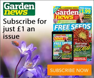 Garden News MPU 19.09.2017.jpg