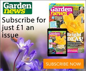 Garden News MPU 21.11.2017.jpg