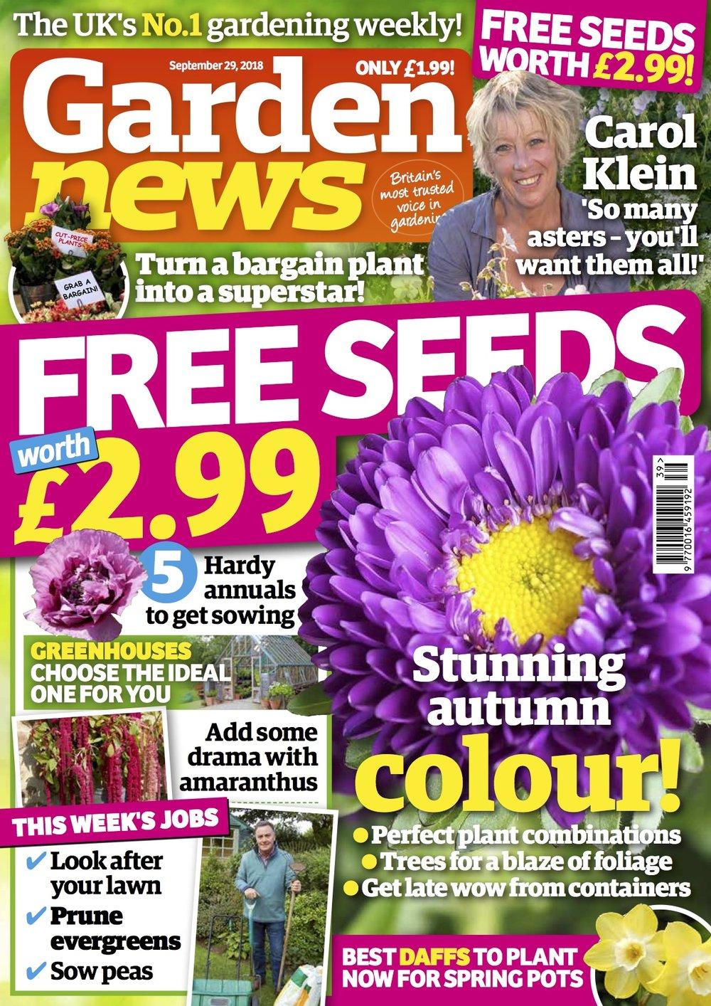 COVER 29 Sept.jpg