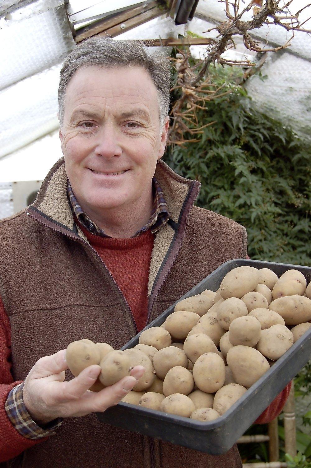 Chit potatoes - main pic.jpg