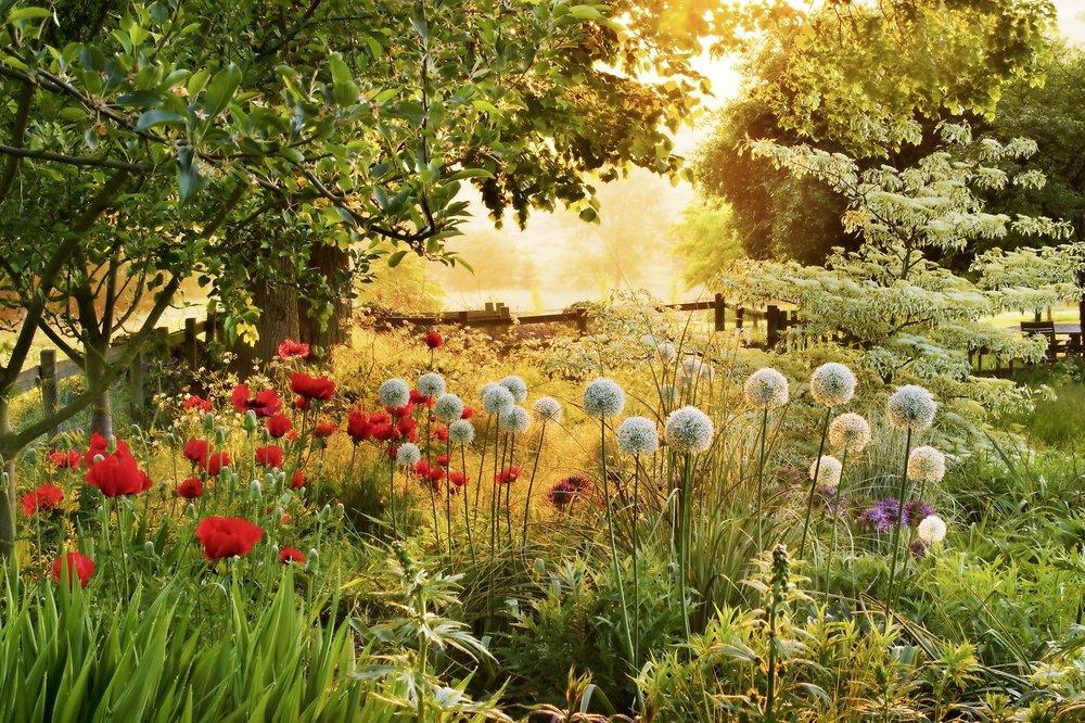 Pettifers, Oxfordshire