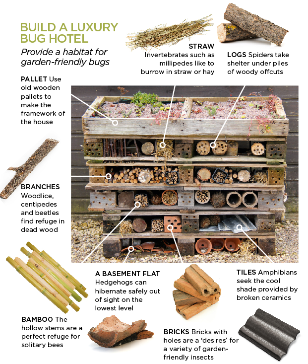 bug hotel annotation.jpg