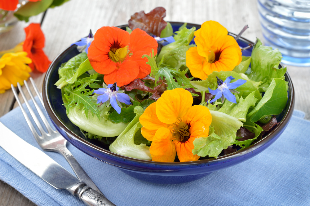 Nasturtiums add a tangy flavour to salads, with borage flowers