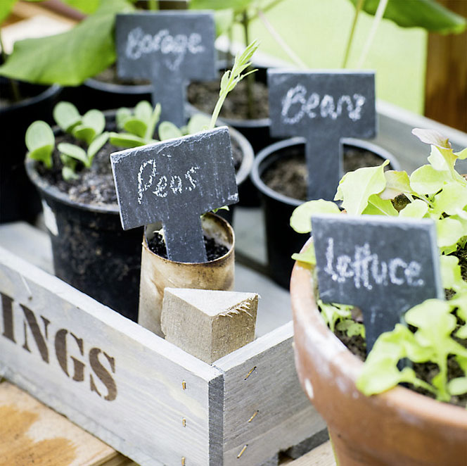 Set of six slate labels with chalk £10 Garden Trading 01993 845559; www.gardentrading.co.uk
