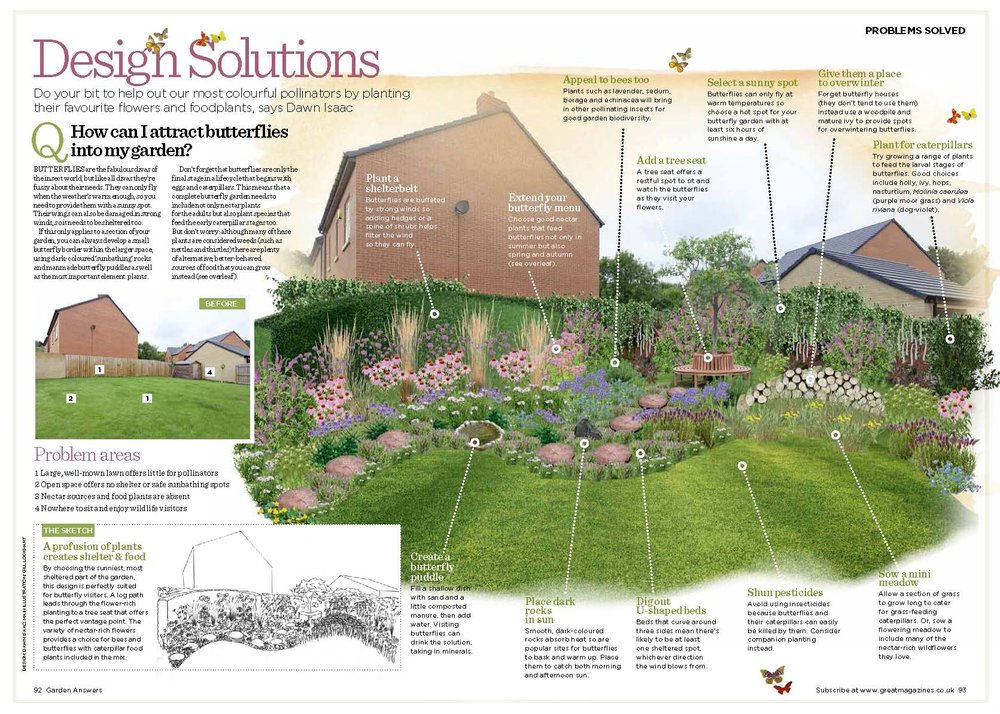 Design Solutions butterfly garden.jpg