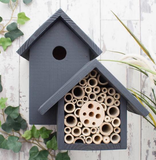 Birds & Bees nest box