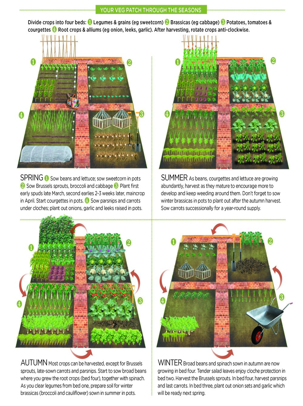 Crop rotation.jpg