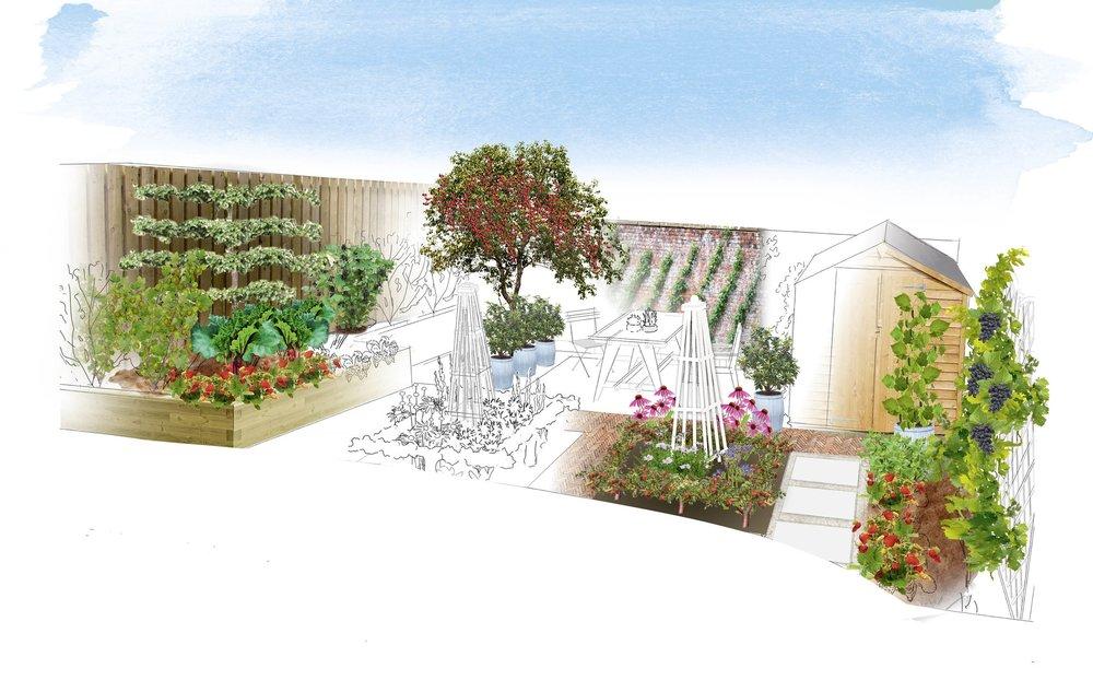 Friut garden1.jpg