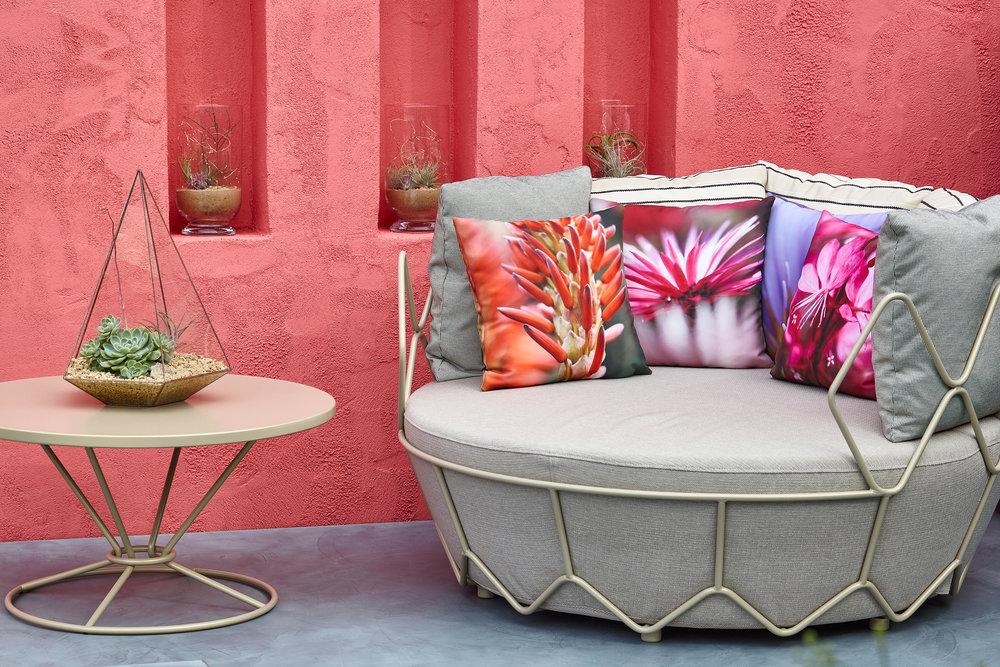 Manoj Malde's Mexican Garden Chelsea Flower Show 2017