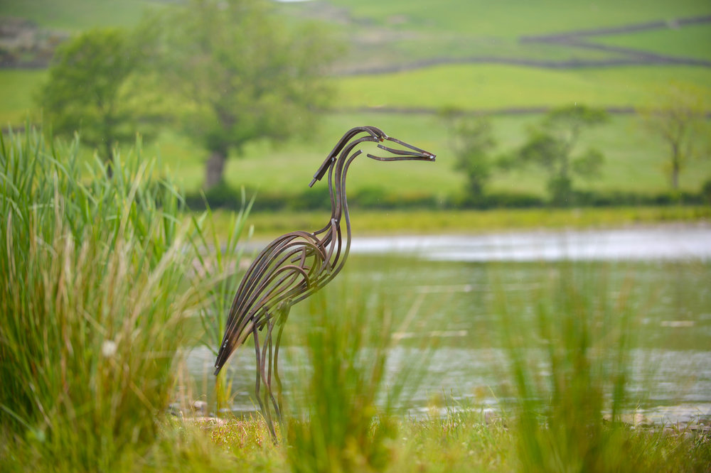 heron-by-lake-copy-4.newjpg