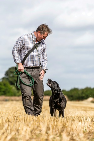 Training a Gun Dog Landscape magazine July/Aug 2016