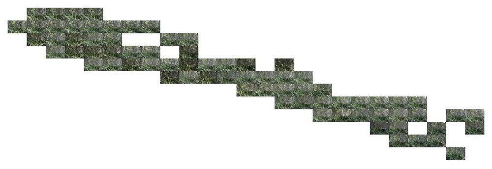 Gaietto 03.jpg