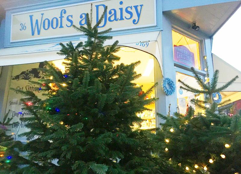 Woofs-a-daisy-christmas-tree.jpg