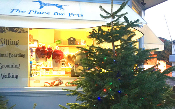 Woofs-a-daisy-christmas-tree2.jpg