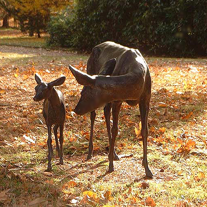 ROE DEER AND FAWN