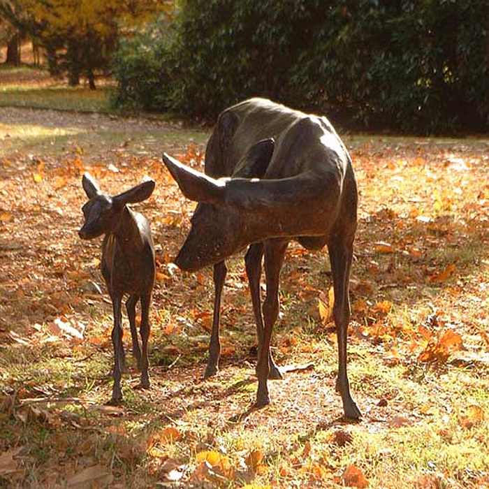 roe-deer-and-fawn_700x700.png